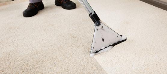 carpet cleaning beaverton